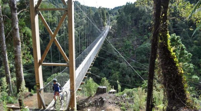 Suspension bridge on the Timber Trail