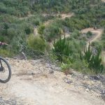 Waitangi Mountain Bike Park, Northland, New Zealand