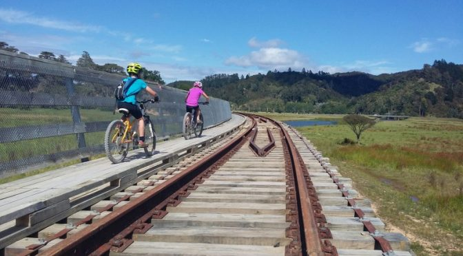 Riding over the Taumarere bridge on the twin Coast Trail, near Kawakawa, Northland