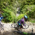 Pakihi Track on the Motu cycle trail