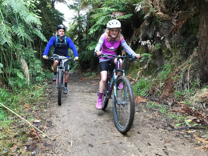Mountain biking the Timber Trail
