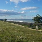 Exploring the Hawkes Bay