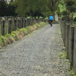 Matakana Shared Path to Point Wells and Omaha