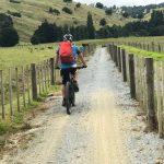 Pou Herenga Tai Twin Coast Trail