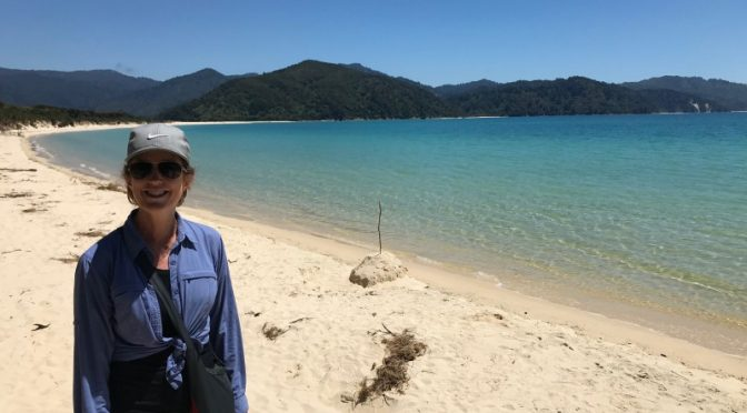 Why you should walk/hike/tramp the Abel Tasman coastal track