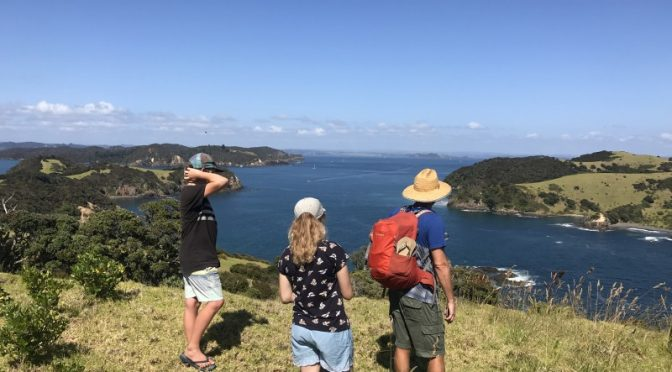 Family friendly activities in the Bay of Islands